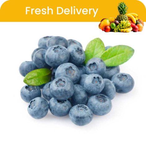 Blueberry-fruit