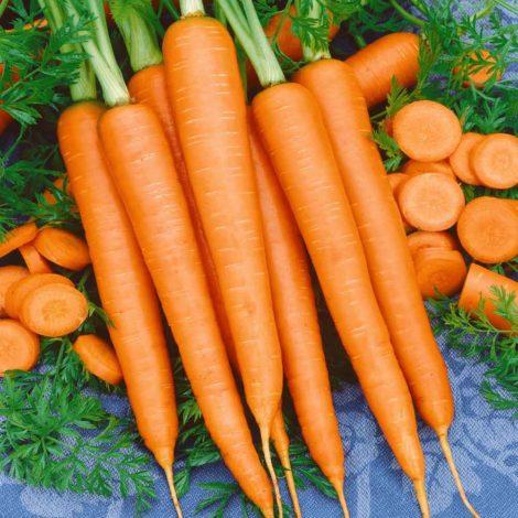 Carrot Carrot 1