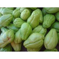Chayote-(Chow-Chow)