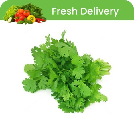 Coriander leaves 1 Bunch Coriander leaves