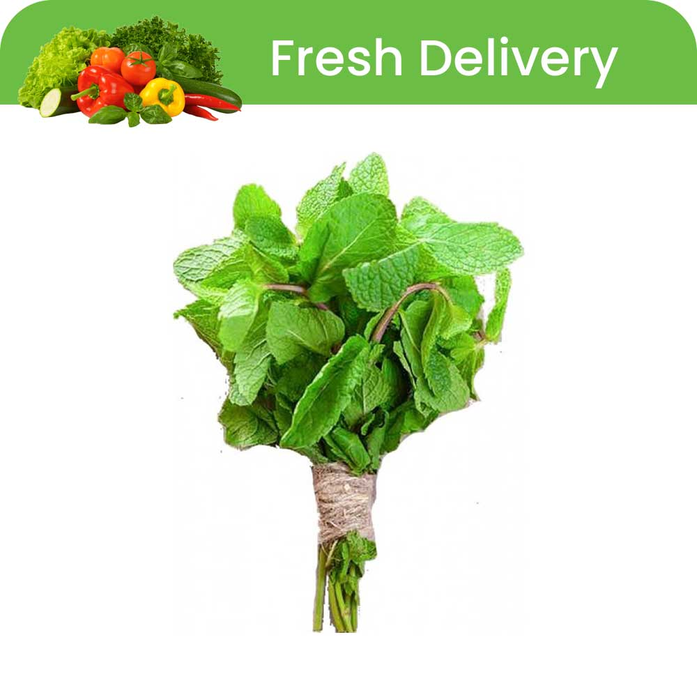 supperkart qatar online grocery mobile Fresh Mint Leaves 1 Bunch