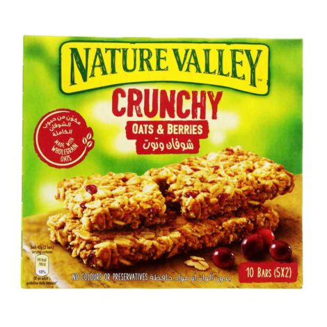 Nature Valley Protein Bar Nature Valley Oats And Berries Granola Bar 42g x 5 Pieces