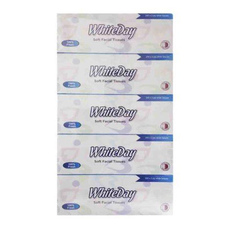 Soft Facial Tissue 200 1