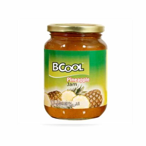 bcool-pineapple