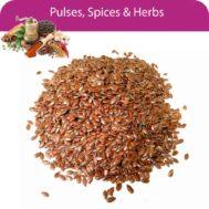 Asario Seed