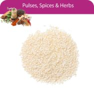 Sesame-Seed-White