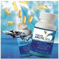 Forever-Arctic-Sea